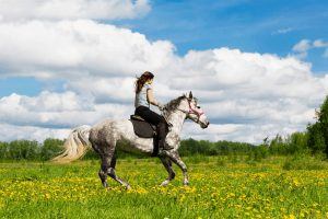 What to Wear Horseback Riding for the First Time