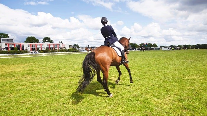 Soloshot vs Swivl: Pros and Cons for Equestrians