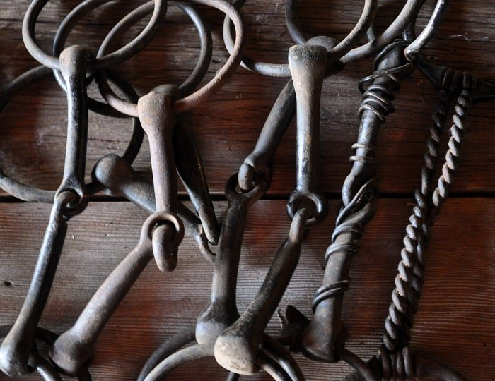 4 common types of english horse bits