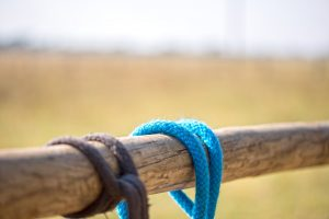 How to Tie a Quick Release Knot