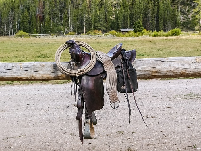 Saddle Attachments- Functions