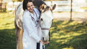 Best Wormer for Pinworms in Horses