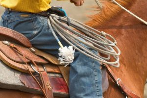 Lariat Rope Types- What Kind Of Rope Is Used For A Lasso