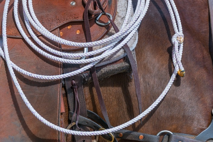 Polyester Lariat Rope