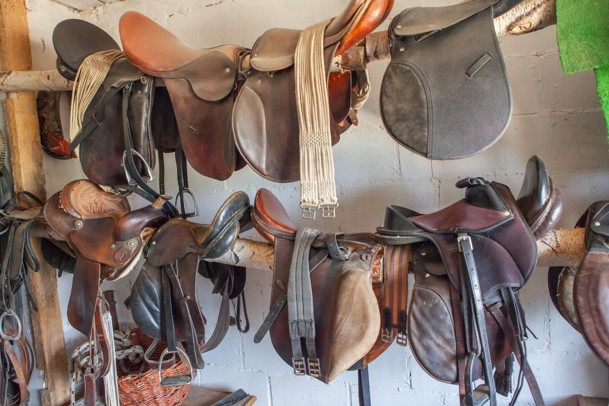 Best English and Western Saddle Brands