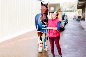 9 Best Ice Boots for Horses