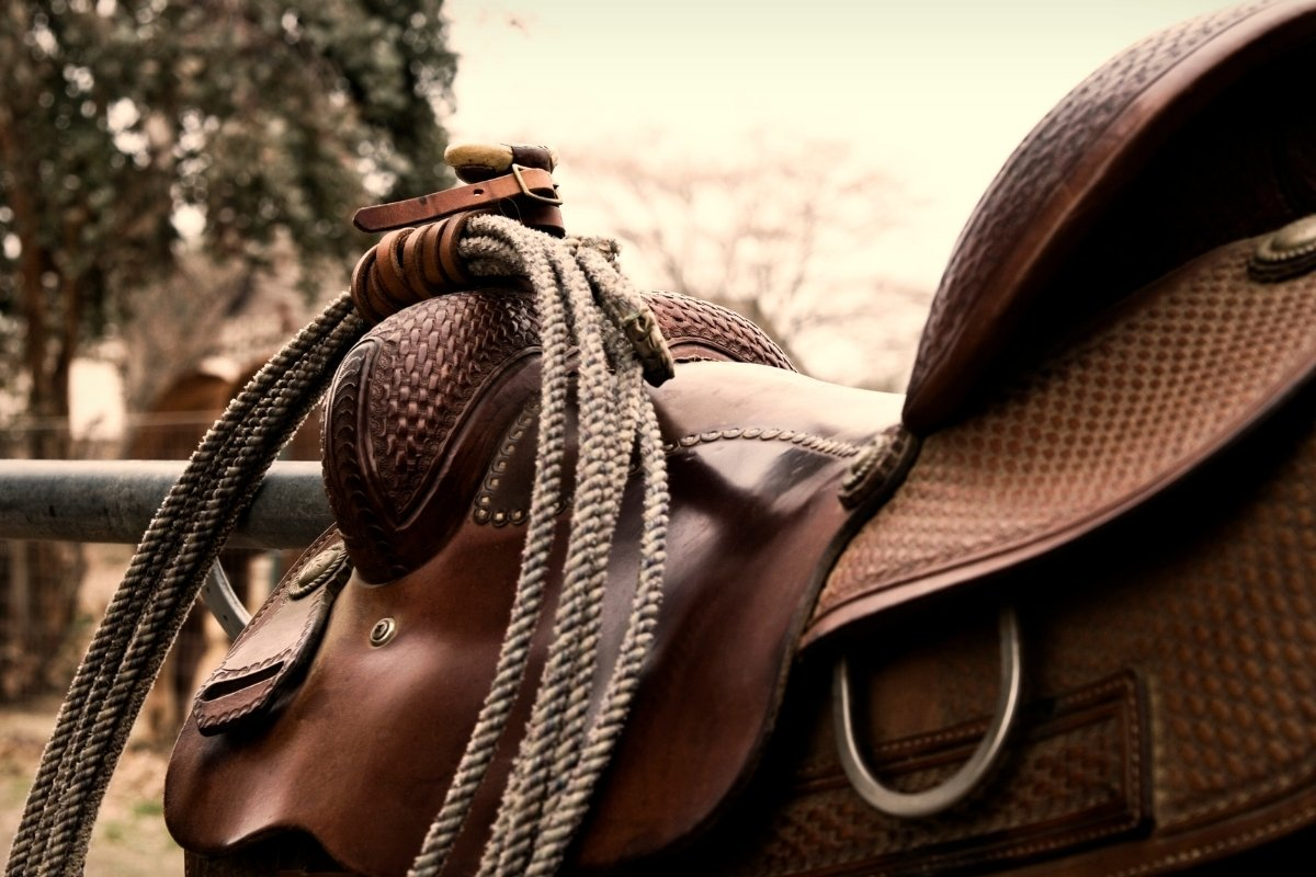 3 Best Roping Saddles On The Market