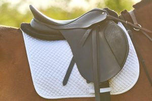 What Is The Best Saddle Pad For Barrel Racing - Top 6