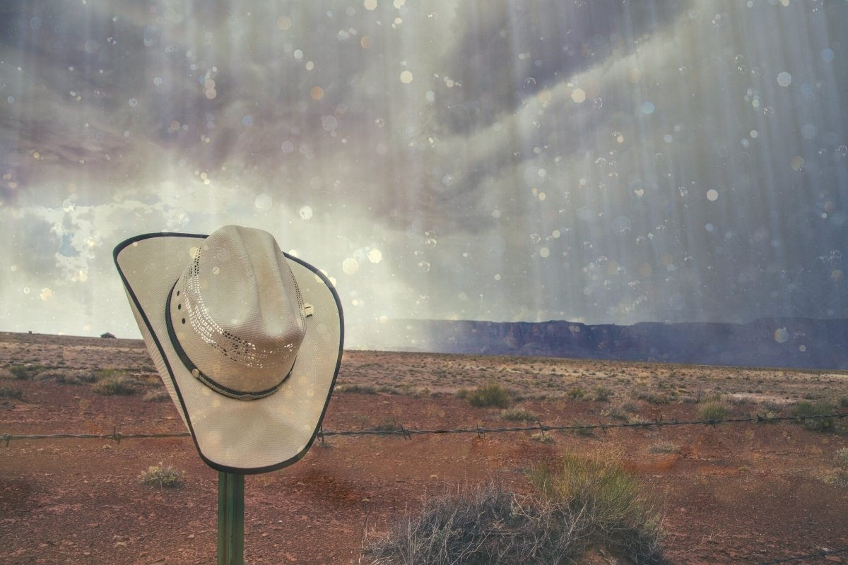 7 Best Cowboy Hats For Rain