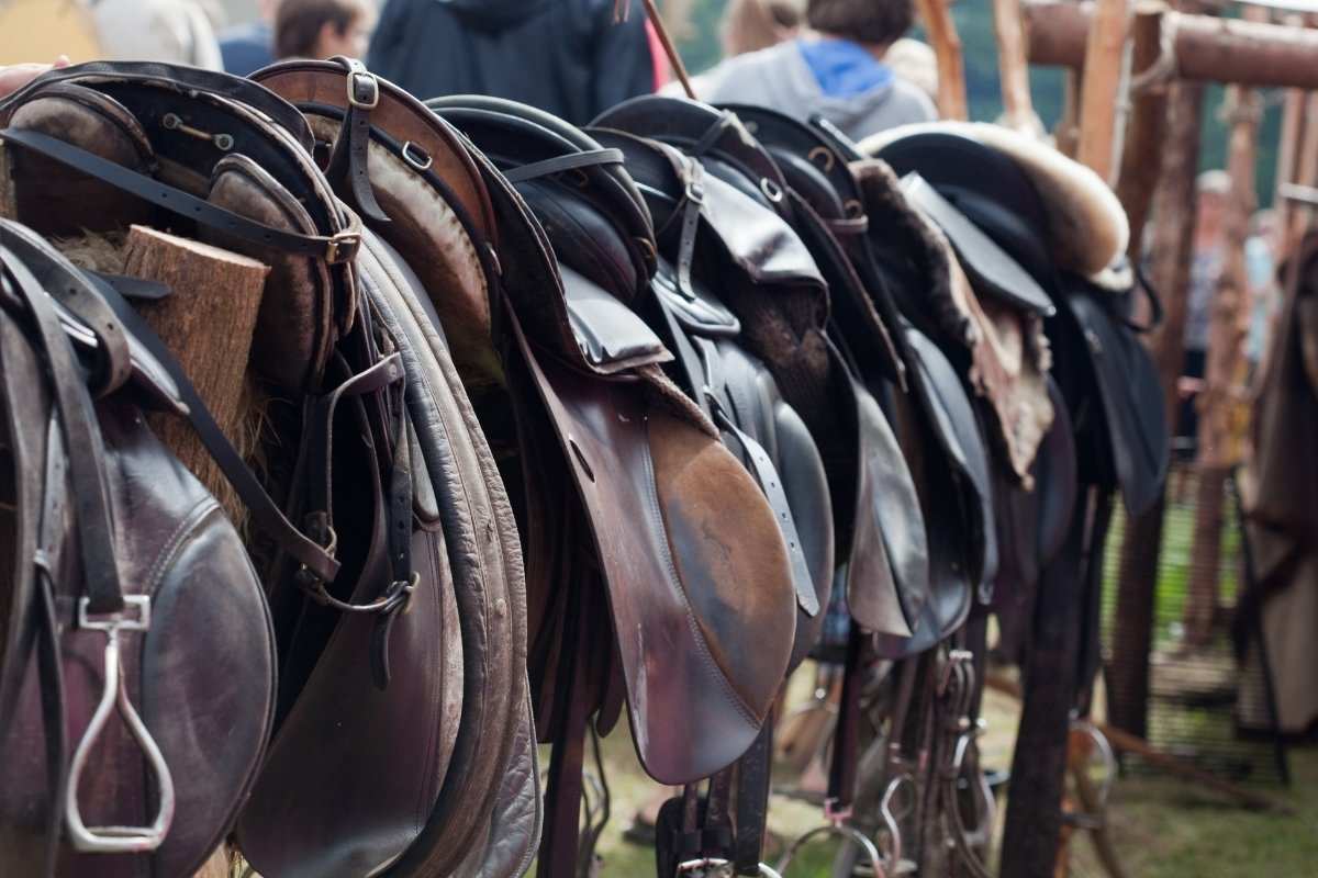 What Size English Saddle Do I Need
