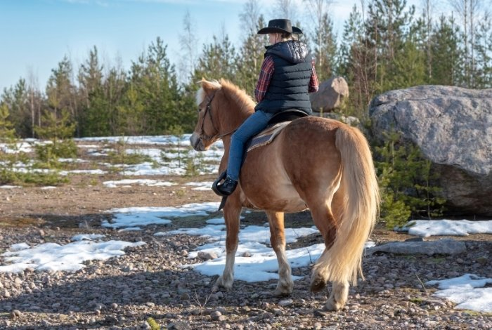 Ranches that Welcome Single Horseback Riding Guests