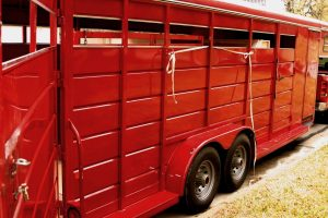 What Does GVWR Mean On A Horse Trailer