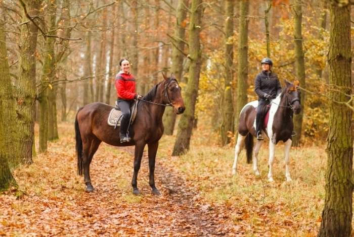When to Book Your Equestrian Vacation