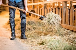 Best Boots For Barn Work - Our Favorites