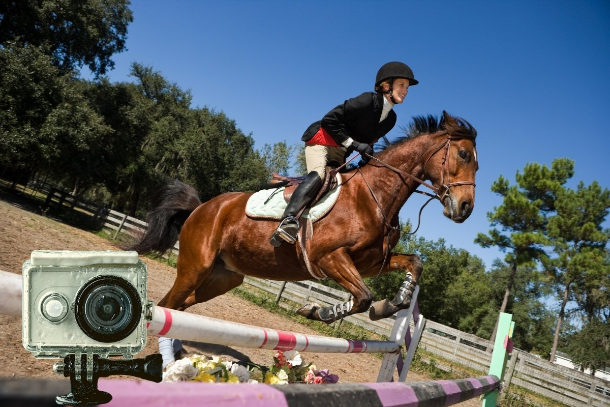 Soloshot vs Move N See - What Is Best For Equestrians