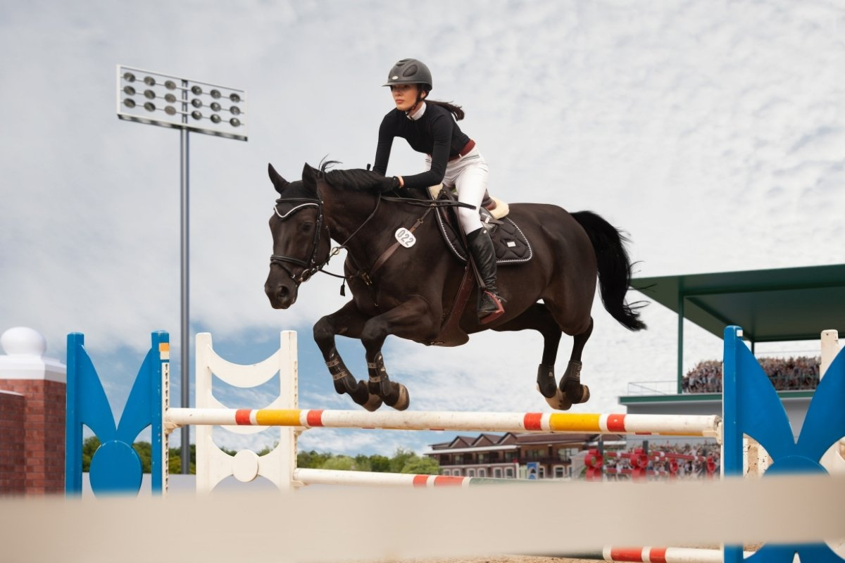Top Equestrian Colleges - Pursuing Your Riding Education