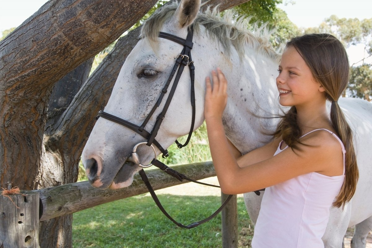 13 Horse Themed Gifts For Tweens