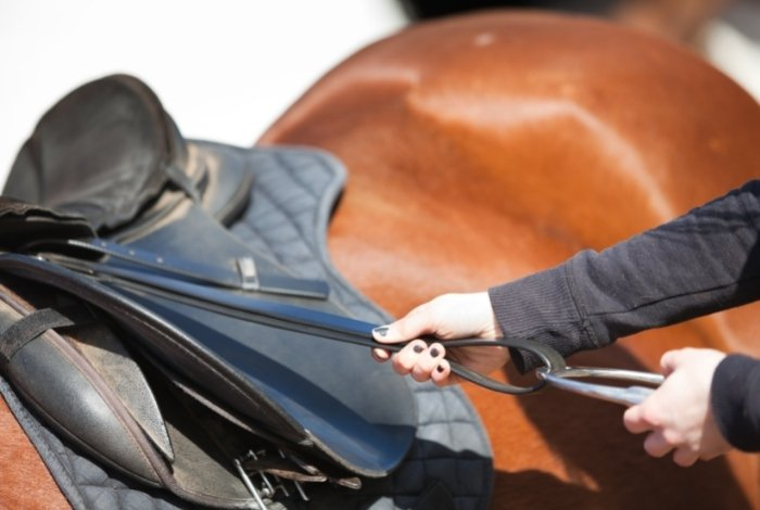 What Is The Right Length for English Stirrups