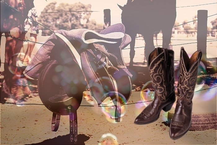 Why You Need Saddle Soap For Shoes