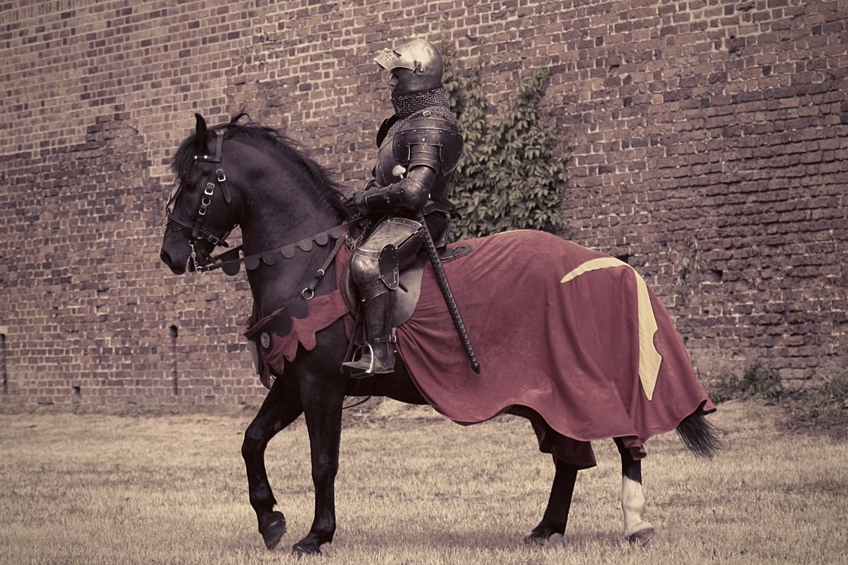 What Kind Of Horses Did Knights Ride